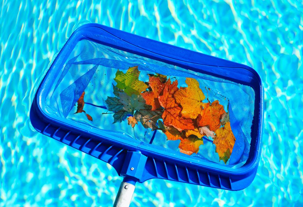 feuilles piscine epuisette